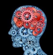 Brain-Gears1-289x300